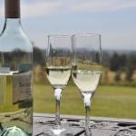夫が14本の大量ワインをまとめ買い…これは食費か?小遣いか?