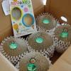 茨城県鹿嶋市「タカミメロン小5個」!子どもの誕生日に食べ放題しちゃいます!