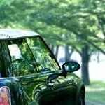 「車を買い替えたい私」は贅沢らしい。今年度も買い替えの予定はなさそうです。